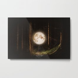 Visiting The Forest Metal Print