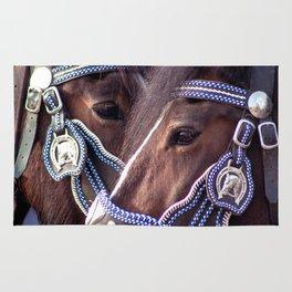 Concept Kaltblutmarkt 2018: 2 horses Rug