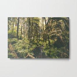 Forest XIV Metal Print