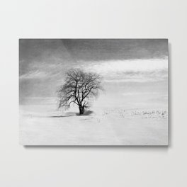 Black and White Tree in Winter Metal Print