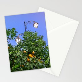 One Night Under The Stars Stationery Cards