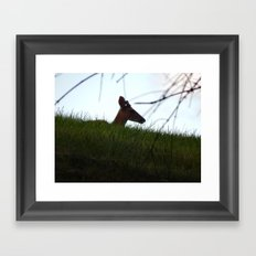 Deer Silhouette Framed Art Print