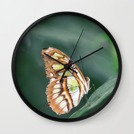 Enchanted Butterfly in Green Wall Clock