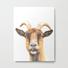 Goat Portrait Metal Print