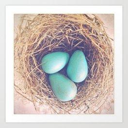 Blue Eggs Art Print