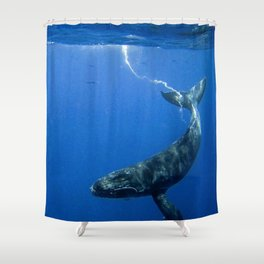 Underwater Humpbacks 14 Shower Curtain