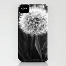 'DANDELION - MAKE WISH' Slim Case iPhone (4, 4s)