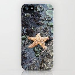 Starfish - La Push iPhone Case