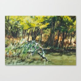 River In Summer Canvas Print