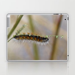 Hang on There Fuzzy Caterpillar 1 Laptop & iPad Skin