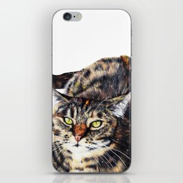 Kitty Cat Chili iPhone Skin