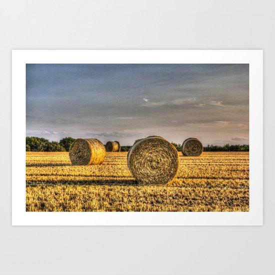 The Summer Farm Art Print