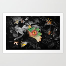The Pieces of Life Art Print