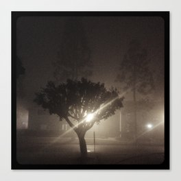 Evening fog. Canvas Print