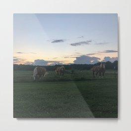 Horses at Sunset Metal Print