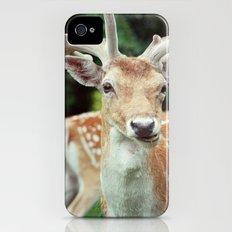 Deer Me Slim Case iPhone (4, 4s)