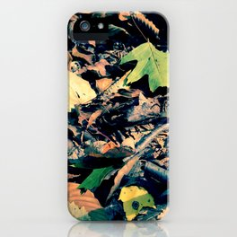 Fall Frolic iPhone Case