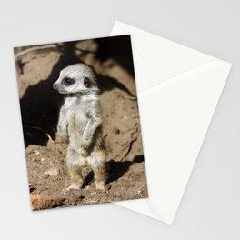 Meerkat20160606 Stationery Cards