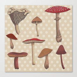 Mushroom Madness  Canvas Print