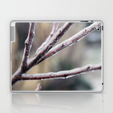 Ice Shield Laptop & iPad Skin