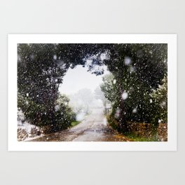 Snow Road Art Print