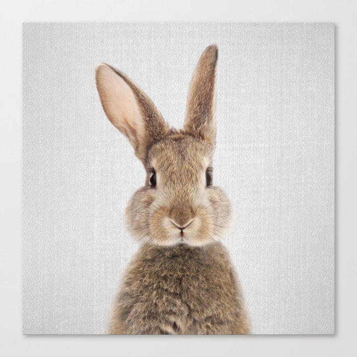 Rabbit - Colorful Leinwanddruck