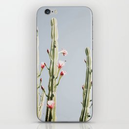 Cereus Cactus Blush iPhone Skin