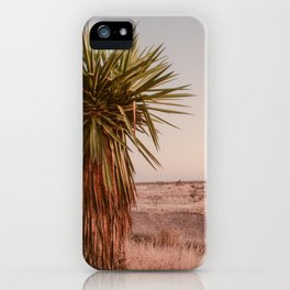 High Desert Sunset iPhone Case