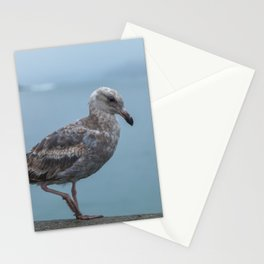 Young Gull Walking Stationery Cards