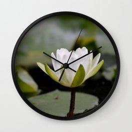 Nymphaea Alba Wall Clock