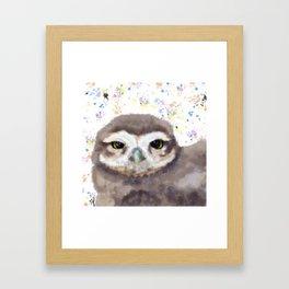 Little Owl (burrowing owl) Framed Art Print