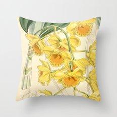 Dendrobium chrysotoxum Throw Pillow