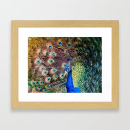 Display Framed Art Print