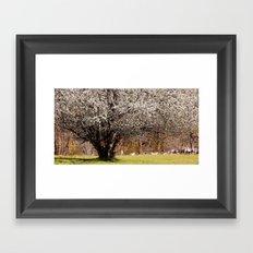 The sheep-tree Framed Art Print
