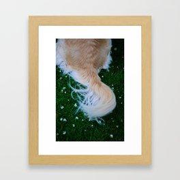 tail Framed Art Print