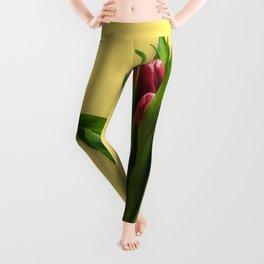 Yellow Bright Light Amber Pink Tulip Blossoms Flatlay Leggings