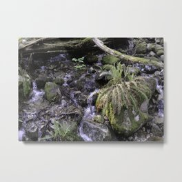 Forest 01 Metal Print