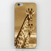 giraffes iPhone & iPod Skins featuring Giraffes by haroulita