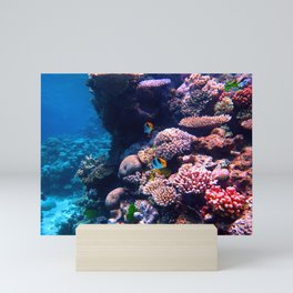 Colorful Tropical Coral Reef Mini Art Print