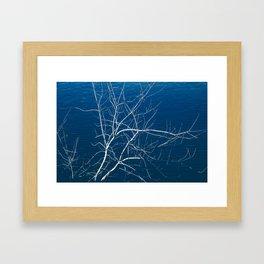 River Branch Framed Art Print