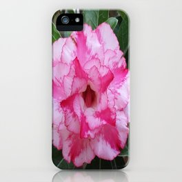 OH! SO SWEET... iPhone Case