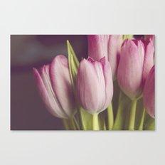 Softness of Spring Canvas Print