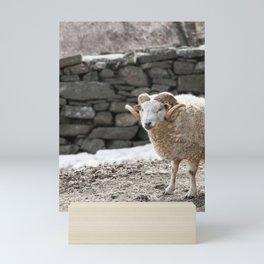 Aries, the Ram, in Winter Barnyard Mini Art Print