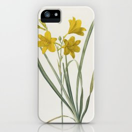 LEMON LILY - Yellow Daylily Flower Print Retro Vintage - Hemerocallis Flava - sweetly fragrant - Redoute Antique iPhone Case