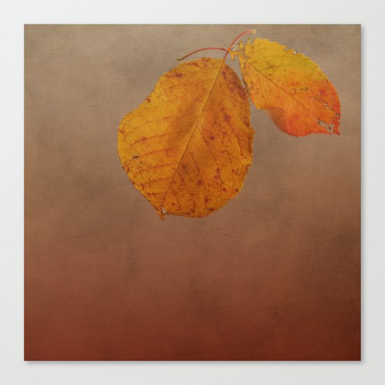 Fall leaves of an Apple tree Canvas Print