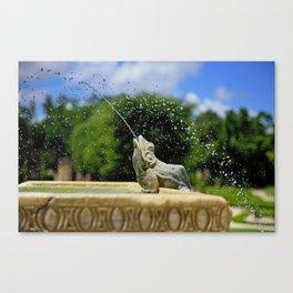 Secret Garden Splashes Canvas Print