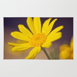 Bright Yellow Daisy - floral photography Rug