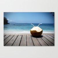 coconut wishes Canvas Prints featuring Coconut by M Paris