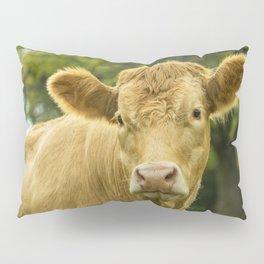 Hey Cow Pillow Sham