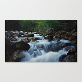 The Soothing Madness Canvas Print